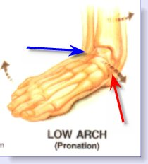pronation foot